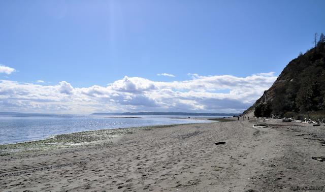 Double Bluff Beach