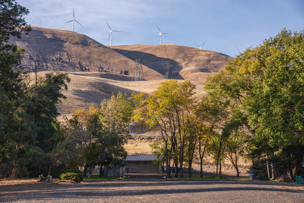 view of a small building nestled in the trees in maryhill state park, rolling hills and windmills are visible in the background