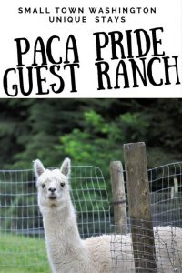 Paca Pride Guest Ranch