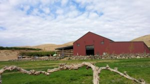 Owen Roe Winery in the Yakima Valley.