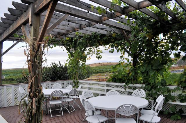 Outdoor patio at Wilridge Winery.
