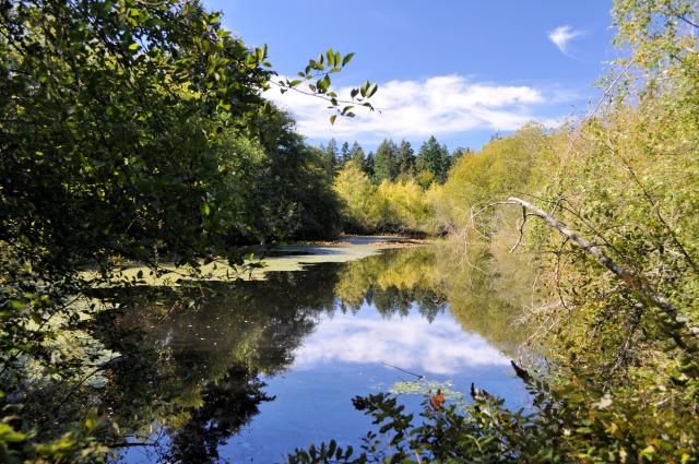 Adam Tallman Nature Park