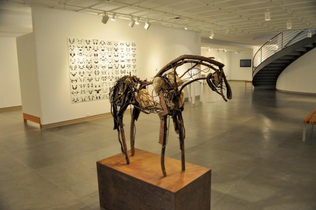 Museum of Northwest Art exhibits.