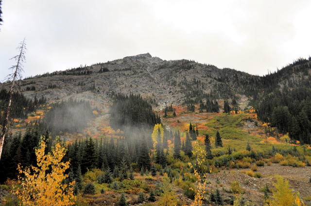 Fall colors in Washington State.