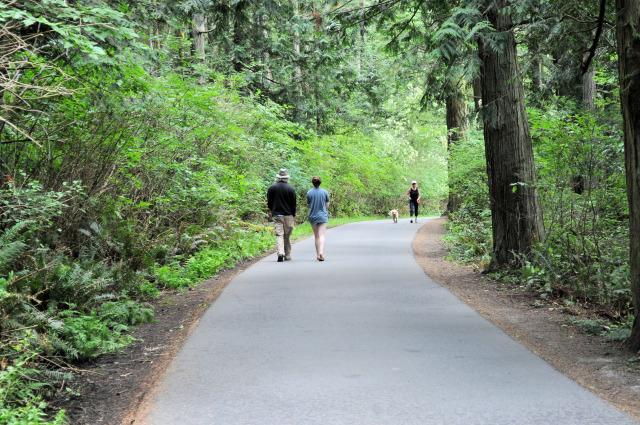 The loop trail at Washington Park in Anacortes.