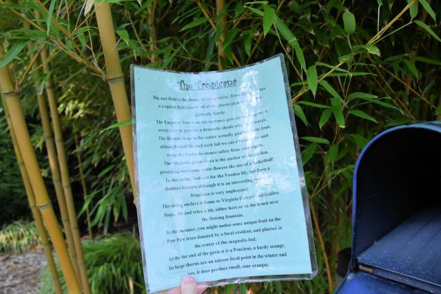 Tropicana garden at Village Green Resort.