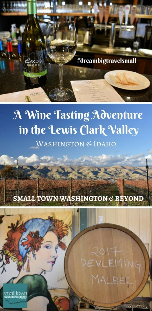 Lewis Clark Valley AVA pin