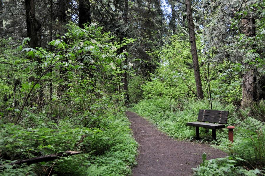 Trails at Berthusen Park in Lynden, Washington