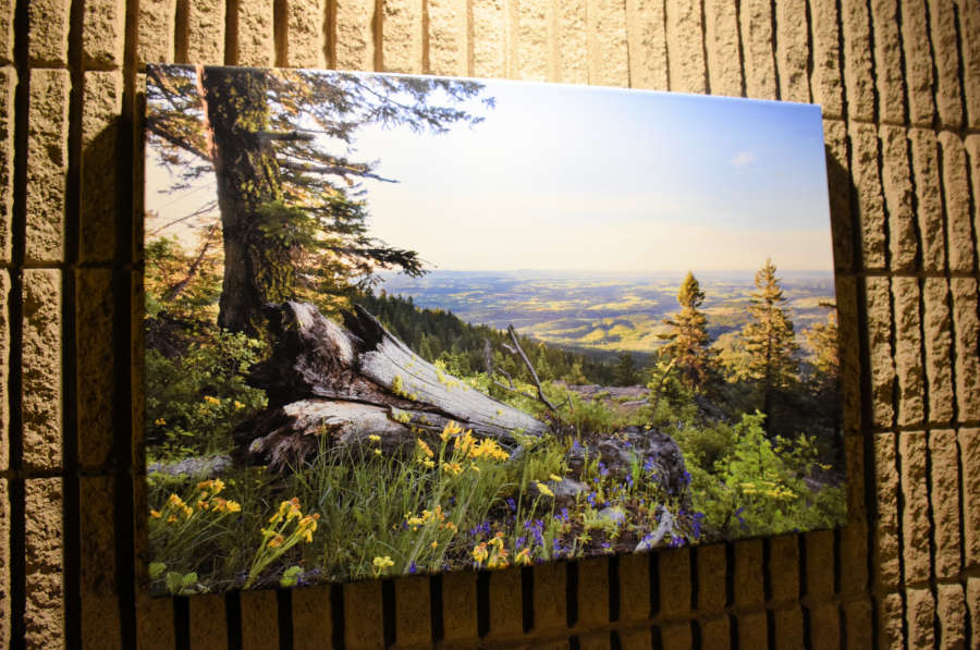 Photos of the Palouse and hiking trails.