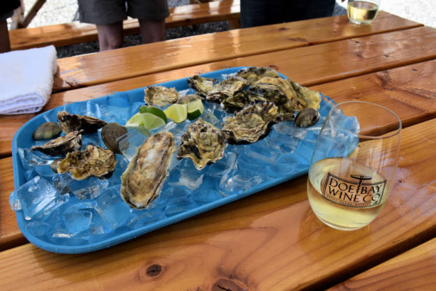 Oysters and Albarino from The Orcas Project.