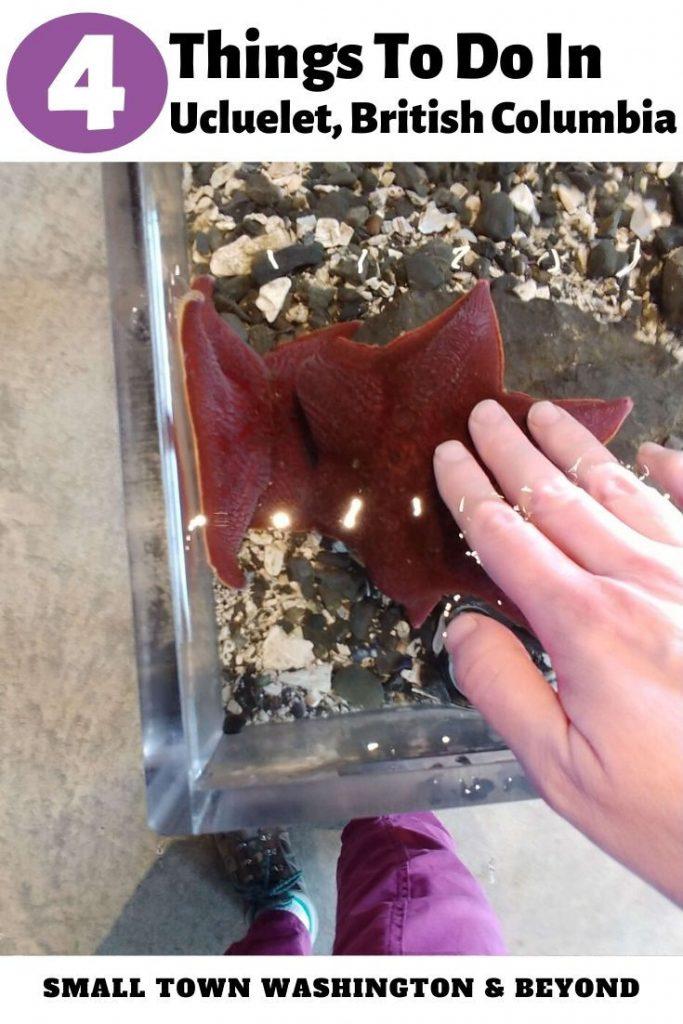 Visit an aquarium in Ucluelet, British Columbia.