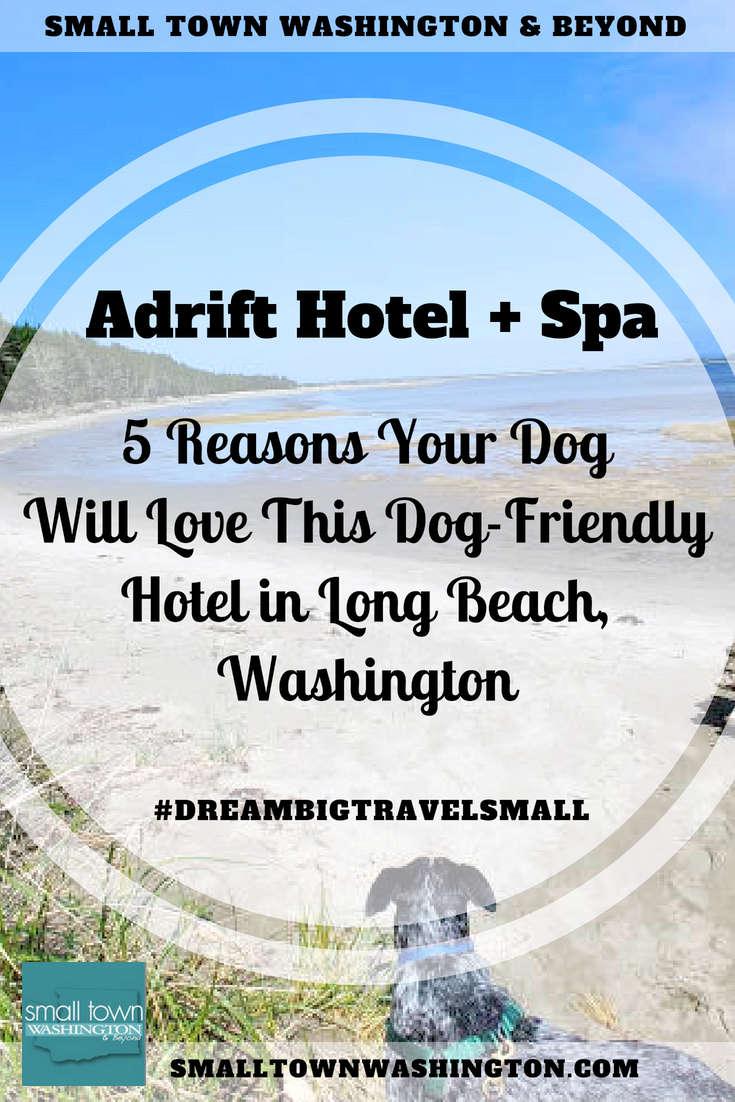 Dog friendly hotel Long Beach