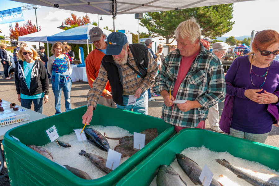 Fish at SeaFeast in Bellingham, Washington.