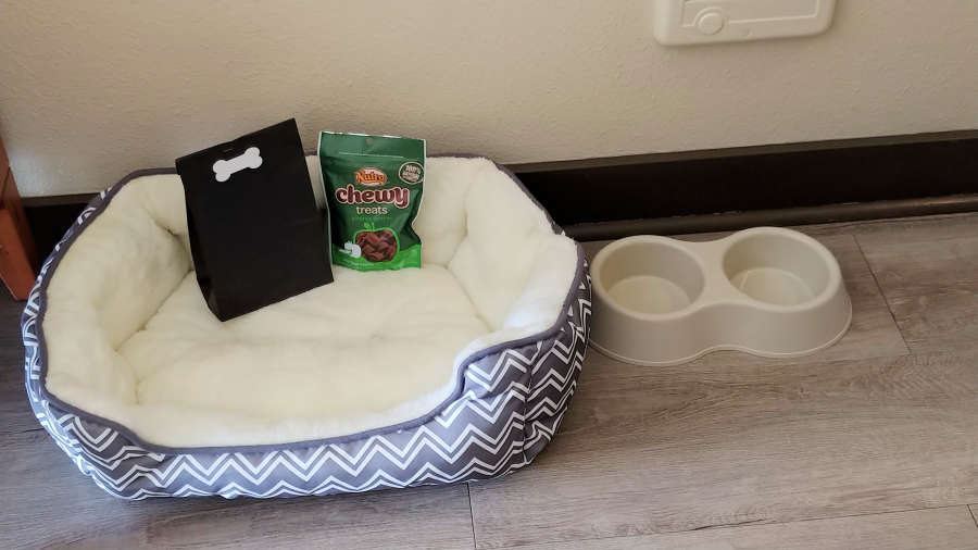 Dog bed and treats at The Coho Oceanfront Lodge in Lincoln City, Oregon.