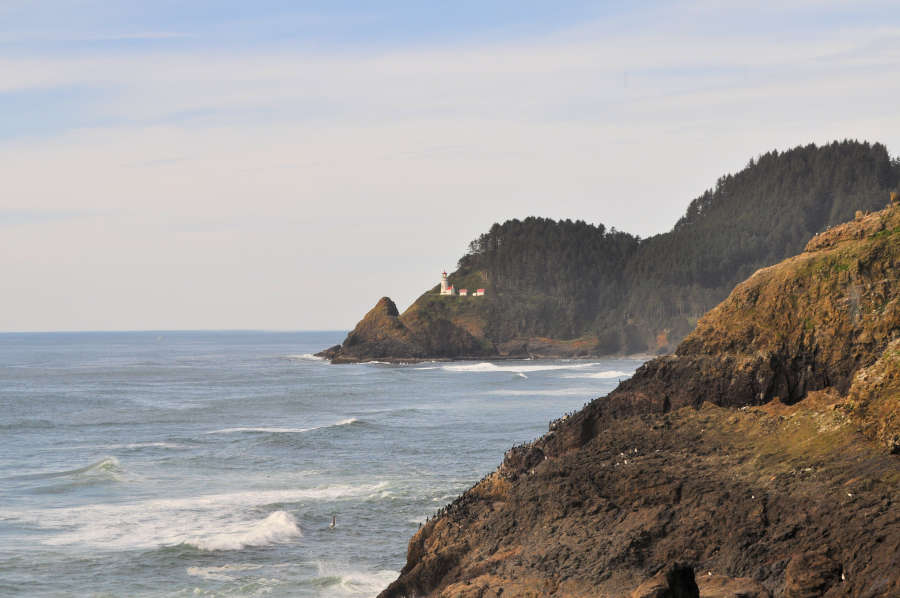 Heceta Head Lighthouse can be seen from the Sea Lion Caves.