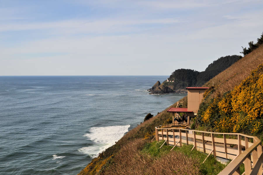 The view as you walk take the short trail to the Sea Lion Caves.