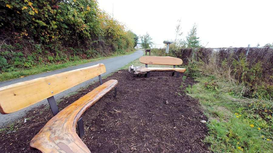 Benches along the Tommy Thompson Trail in Anacortes, Washington.