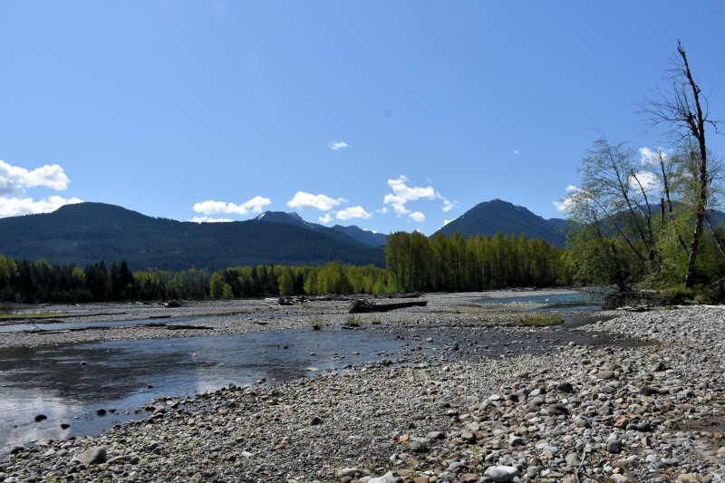 The Cowlitz River in Packwood, Washington.