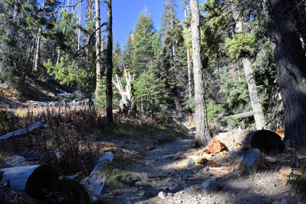 Trail to Clara Lake in Wenatachee, Washington.