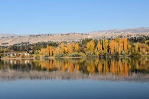 The Wenatchee River with fall colors.