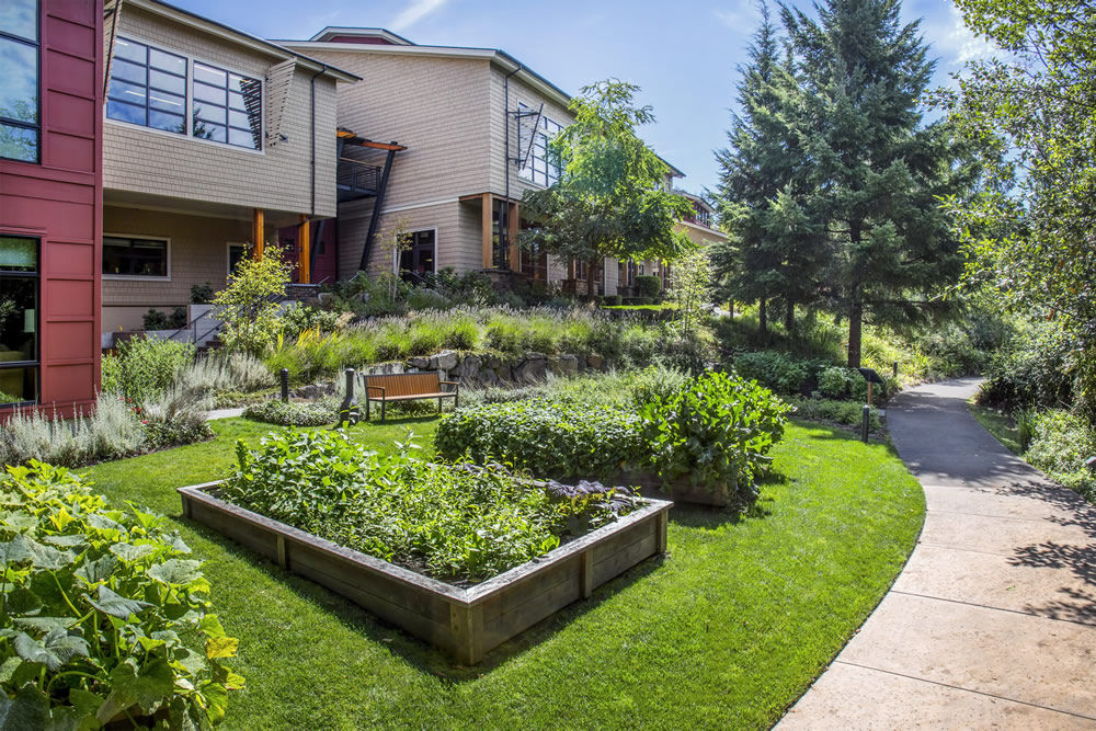 Herb gardens at Cedarbrook Lodge in SeaTac, Washington.