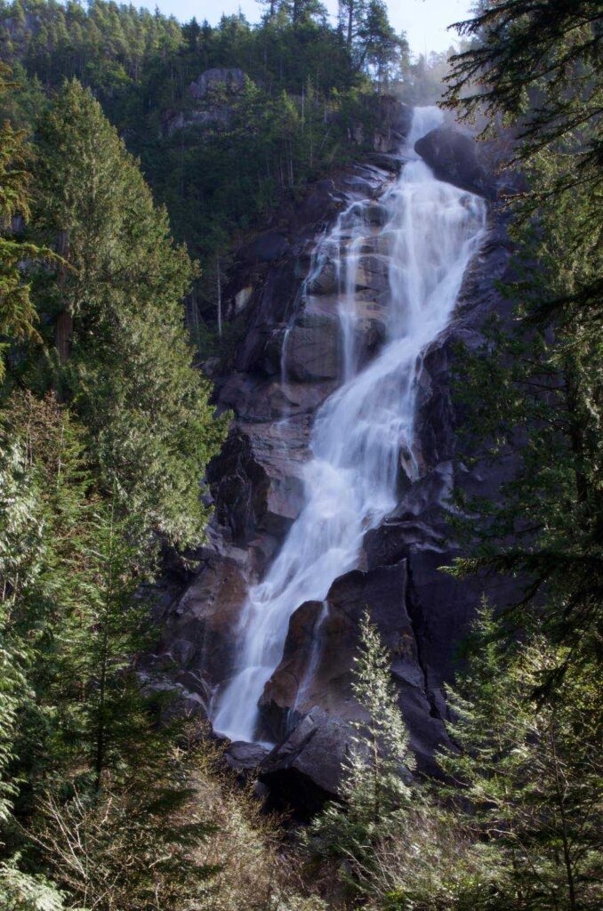 Vertical photo of Spray Falls, a famous waterfall hike in Washington's Mount Rainier National Park, cascading down rock with pine trees.