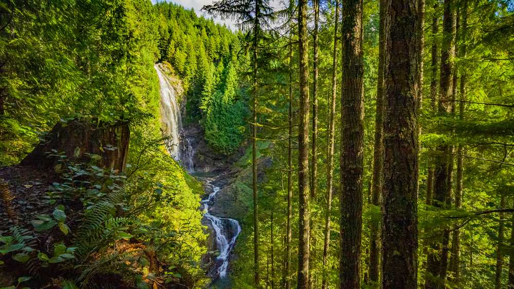 A wide-angle view of the several tiers of the Wallace Falls, including one tall waterfall drop and two smaller tiers, view from above in a forest.