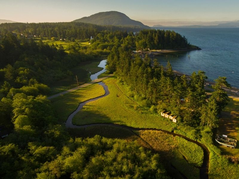 Aerial photo of Lummi Island with a river running through it and lots of pine trees and a small mountain in the distance.