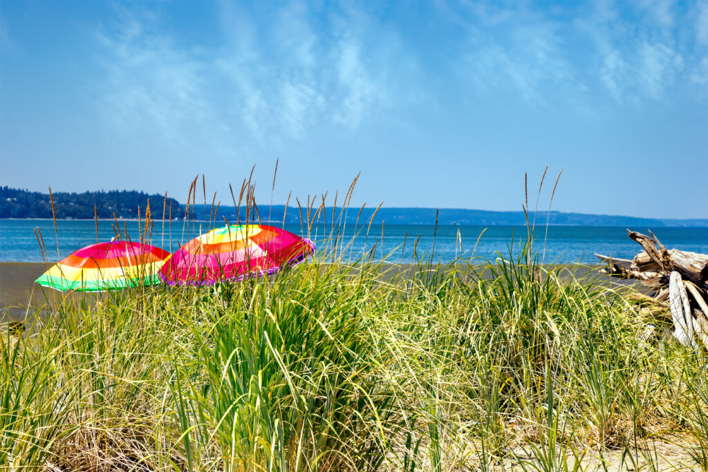 colorful umbrellas on jetty island with grass in the foreground and water in the background, one of the best beaches in washington state
