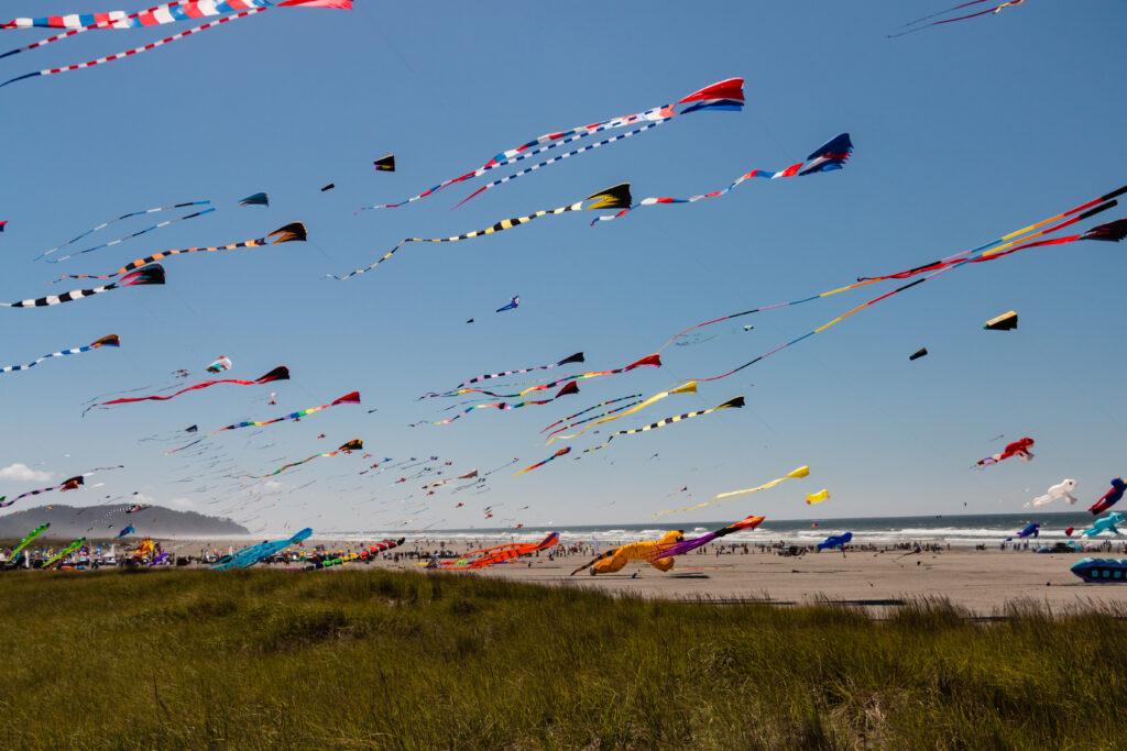 colorful kites flying above long beach washington state