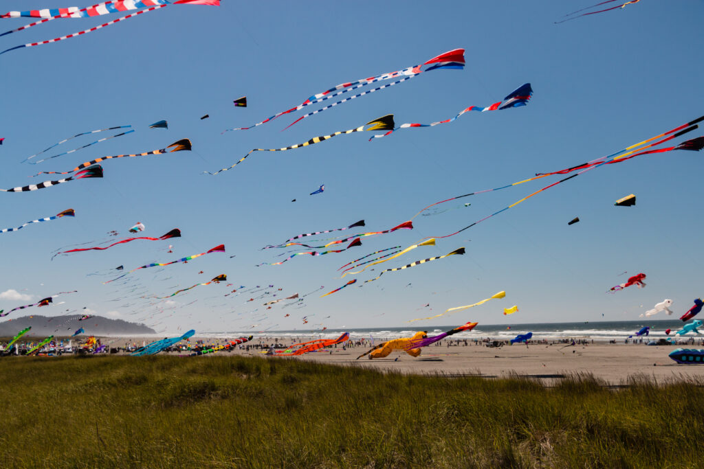 colorful kites flying over long beach washington on a clear day