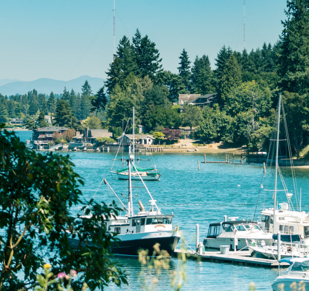 view of vashon harbor as seen through the trees with sailboats in the foreground