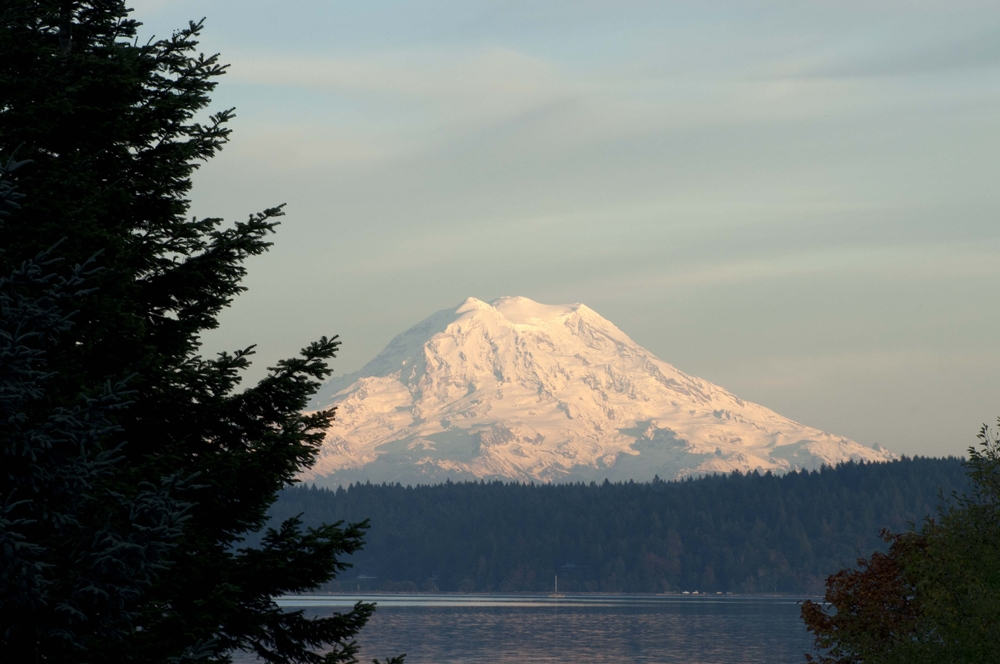 Photo of Mount Rainier covered in snow with foreground of pine trees and water taken from an island in Washington State
