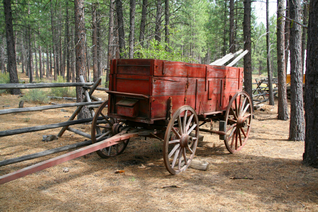 old fashioned cart at the high desert museum in oregon surrounded by trees
