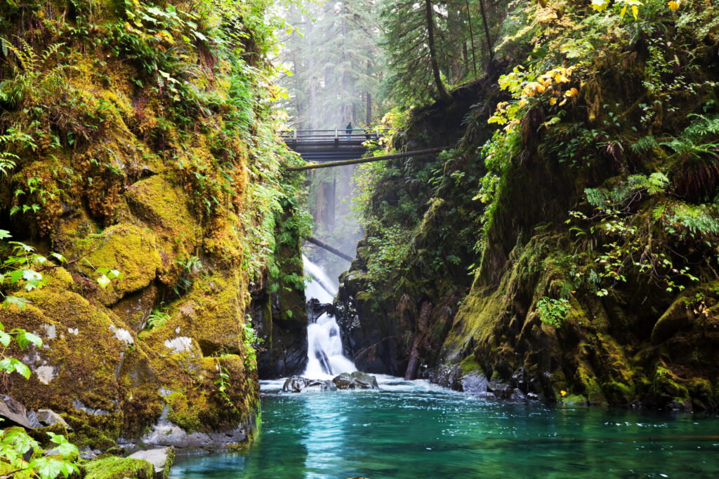 bridge in the forest over a beautiful river in olympic national park, one of the best weekend getaways from seattle wa