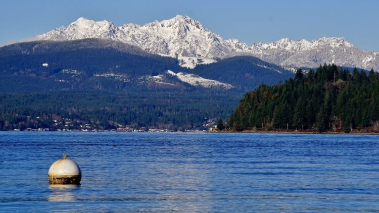 The blue water in Hood Canal, with distant mountains in the background covered in snow