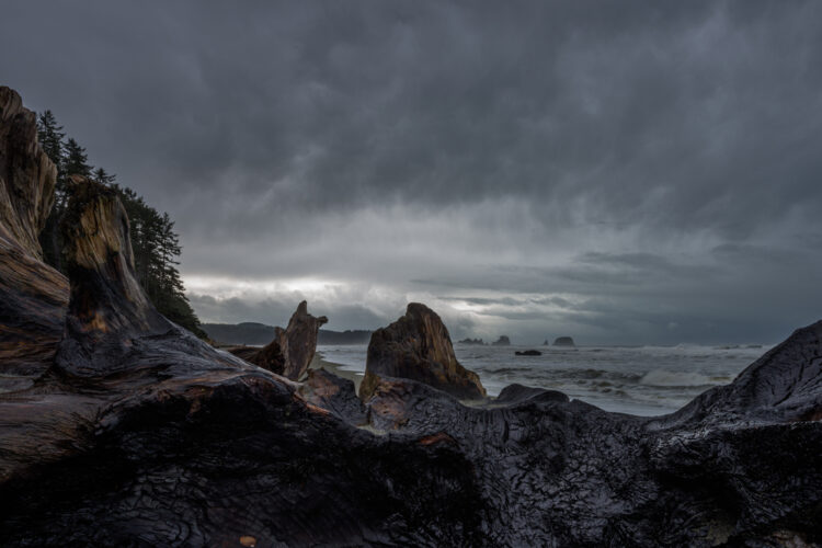 A view of the stormy gray sky covered in thick clouds and rough surf on the beach of Shi Shi Beach with a piece of driftwood in the foreground. Stormwatching is a popular Olympic NP winter activity