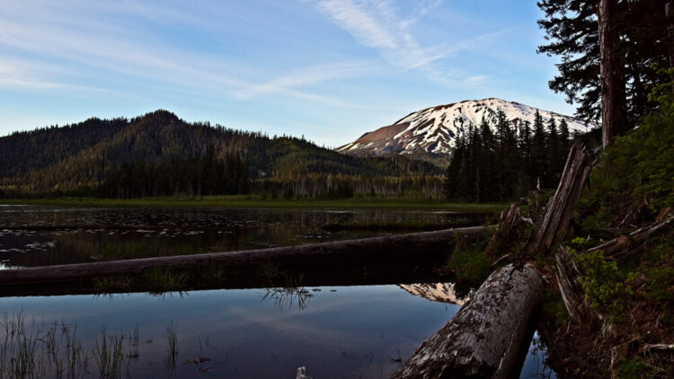 Peak of Mt St Helens covered in some snow showing behind some smaller hills and a small marshy area with a log in the foreground and some reflections in the still water.