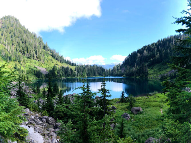 Greenery of trees and grass surrounding a still, glassy turquoise blue lake on a sunny day hiking near the Mountain Loop Highway in Washington State