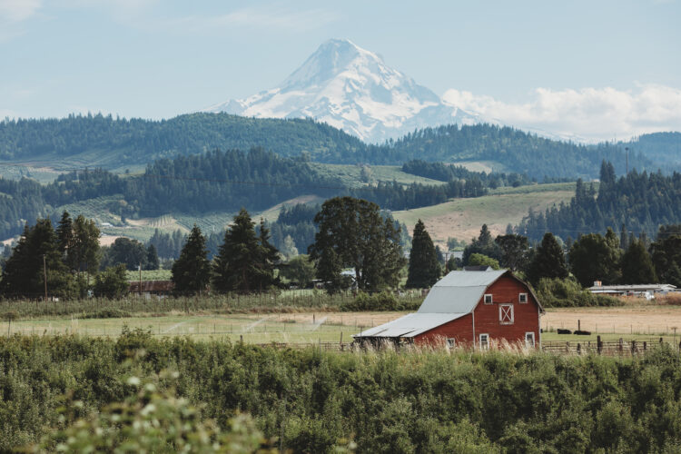 red barn near la grange oregon with mount hood in the background, a great sight along one of the best road trips in oregon