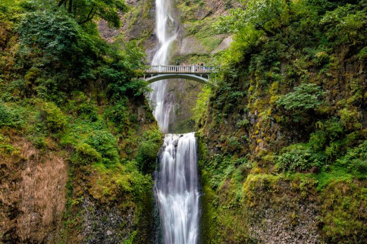 multnomah falls near portland oregon