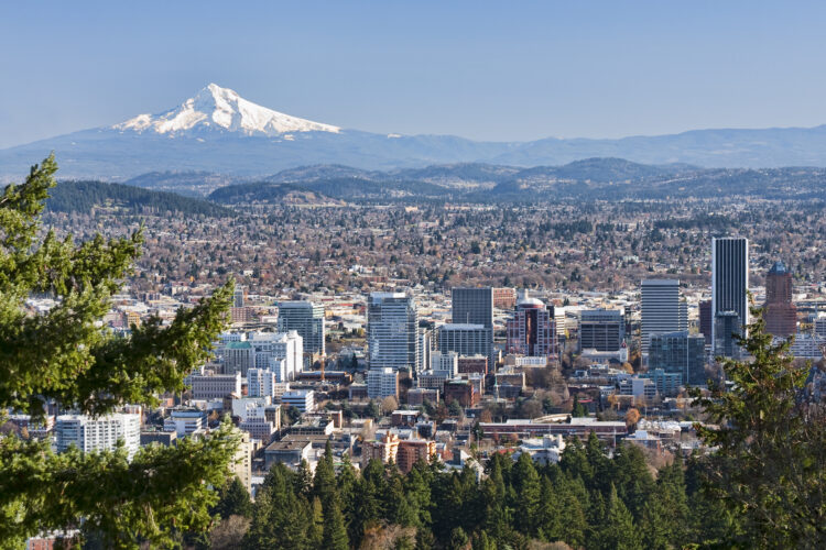 portland oregon skyline from above with mt hood in the back left of the photo