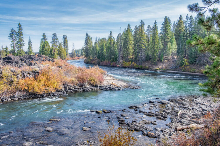 Bend in a turquoise blue river, surrounded by evergreen trees and some orange shrubbery, near a hiking trail near Bend