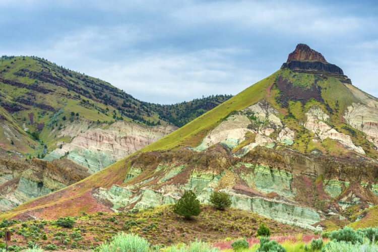 Greenish and red desert landscape at Sheep Rock in the John Day Fossil Bed National Monument on an overcast day.