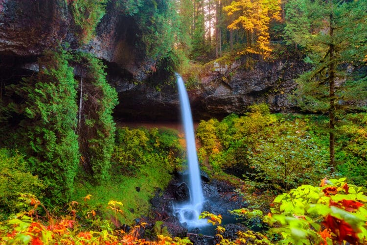 north falls at silver falls state park in the fall, one of the best day trips from portland oregon