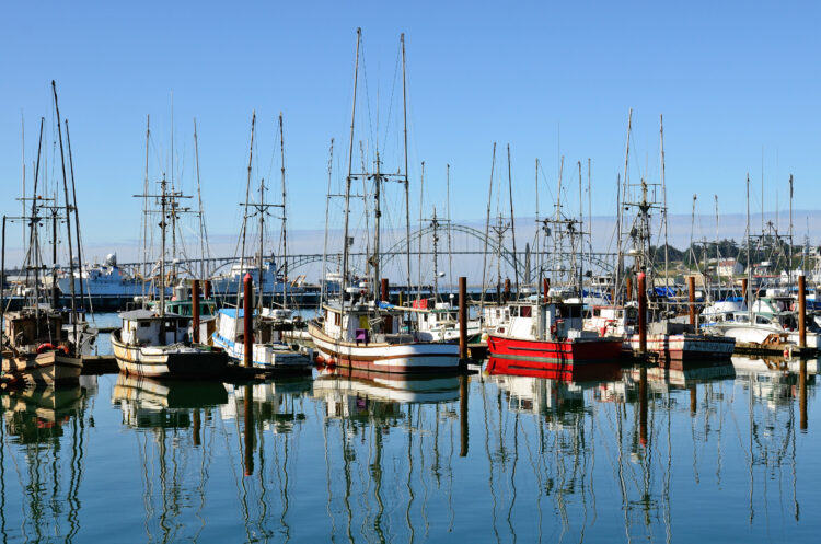 sailboats in newport harbor, one of the prettiest coastal towns in oregon