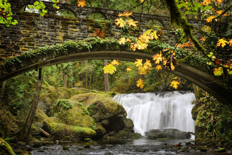 A small but wide waterfall churning over some rocks, with a foliage-covered stone bridge in front of the waterfall framing it beautifully, and some yellow fall leaves in front of the bridge.