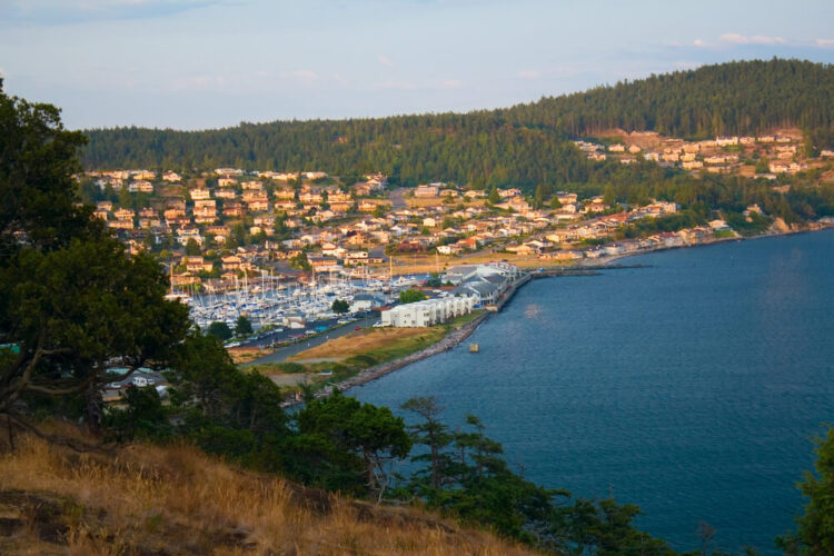 View from a hilltop of the coastal city of Anacortes Washington on Fidalgo Island with marina, houses, and trees.