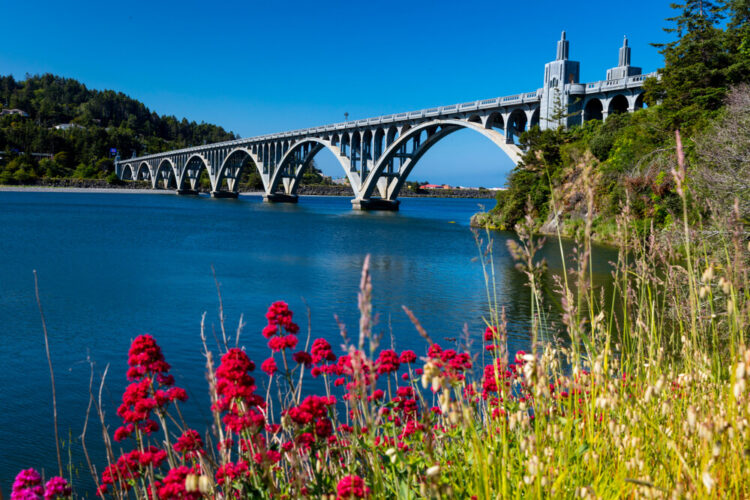 Isaac Lee Patterson Bridge, also known as the Rogue River Bridge Gold Beach, Oregon with red wildflowers in the bottom of the frame and blue water underneath the bridge