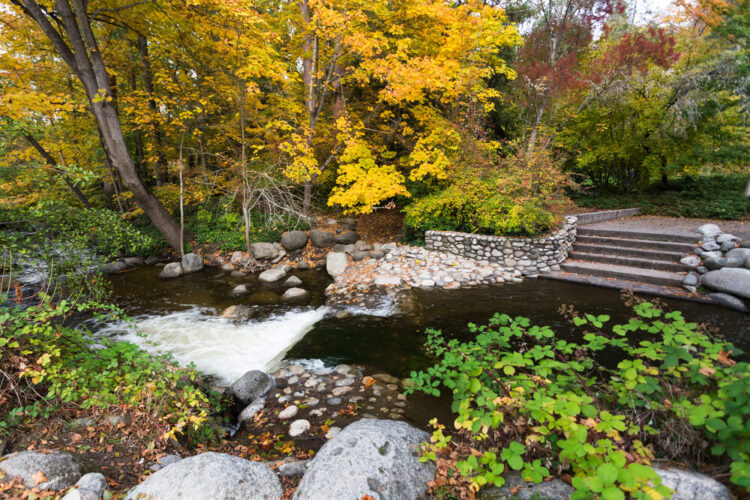 lithia park with a stream, stairs, and yellow and green trees